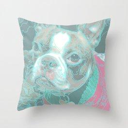 bd Throw Pillow