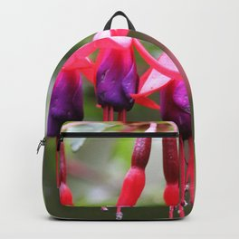 Fuchsia Magellanica Backpack