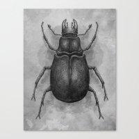 beetle Canvas Prints featuring Beetle by Salih Gonenli