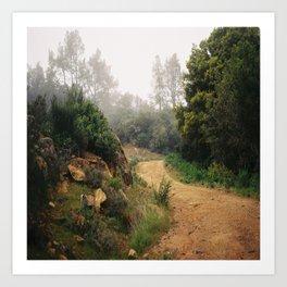 (follow the path) Art Print