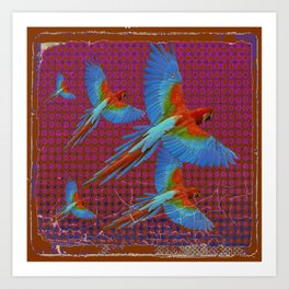TROPICAL BLUE MACAWS MAROON-BROWN ART Art Print