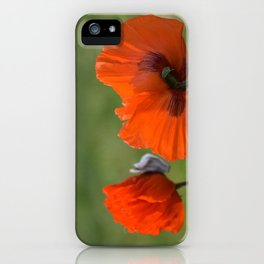 PRETTY POPPIES IN THE LATE AFTERNOON SPRING SUNSHINE iPhone Case