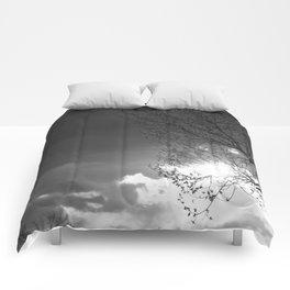 Someone's Sun Has Set Comforters