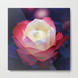 bed of roses: night shades Metal Print