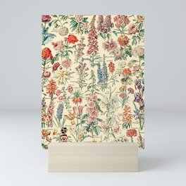 Vintage Floral Drawings // Fleurs by Adolphe Millot XL 19th Century Science Textbook Artwork Mini Art Print
