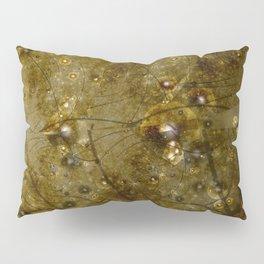 Star Chart Pillow Sham