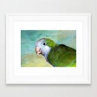 parrot Framed Art Prints featuring Parrot by ThePhotoGuyDarren