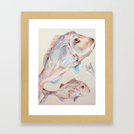 Pink Snapper Fish Framed Art Print