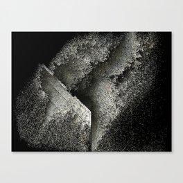 debrisdrift Canvas Print