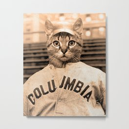 Baseball Kitten #2 Metal Print
