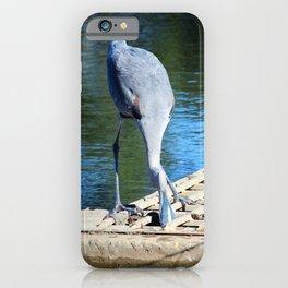 Secret Fishing Hole iPhone Case
