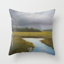 Close to Home Throw Pillow