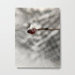 Snow Berry Metal Print