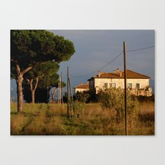 Sunny countryside in Italy Canvas Print