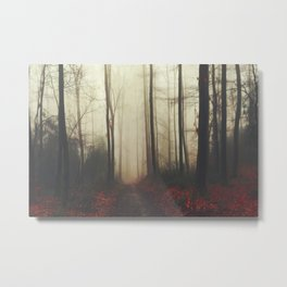 Forest Hike Metal Print