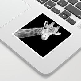 B&W Giraffe Portrait Sticker