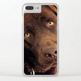 Benji Clear iPhone Case
