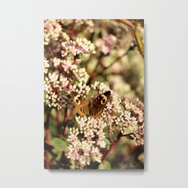 Buckeye Butterfly On Pale Pink Flowers Metal Print