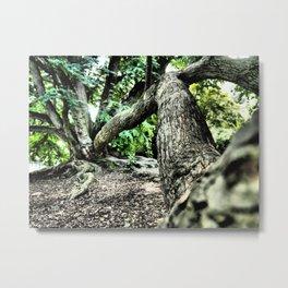 Tree Selfie Metal Print