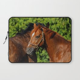 Lean on Me: Two Friends in the Summer Sun Laptop Sleeve