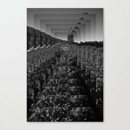 The straight line is godless and immoral. Canvas Print
