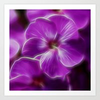 Abstract Phlox Art Print