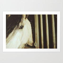 Horse Stall Art Print
