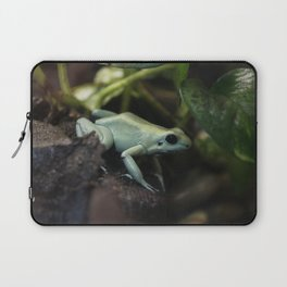 Mint Terribilis Poison Dart Frog Laptop Sleeve