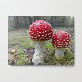 The Two in Red. Metal Print