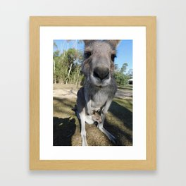 Cute Kanga and Joey Framed Art Print