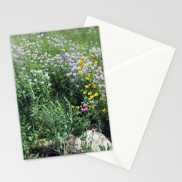 Native Prairie Stationery Cards