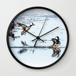 Hooded Megansers Landing Wall Clock