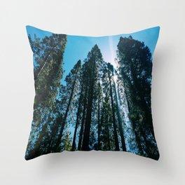 Sequoias Throw Pillow