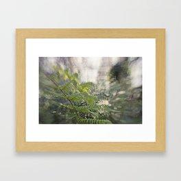 Irriguous  Framed Art Print