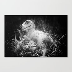 DinoLand I Canvas Print