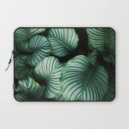 Tropical Palm Tree Plants Laptop Sleeve