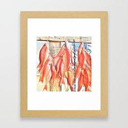 Redfish- Destin Florida Framed Art Print