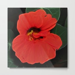 Wonderful red cress Metal Print