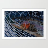 trout Art Prints featuring Trout by Tyler Shaum