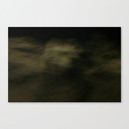 ocean3 Canvas Print