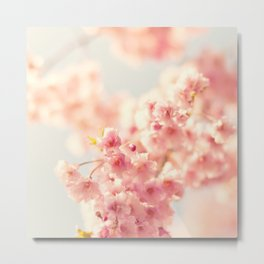 Tiny striking blossoms Metal Print