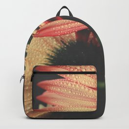 flowers III - Gerbera Daisies Backpack