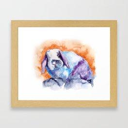 BUNNY#11 Framed Art Print