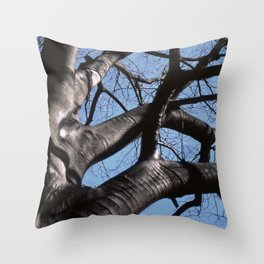 maple tree in winter Throw Pillow