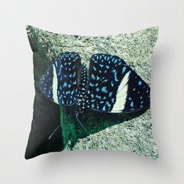 Starry Night Cracker Throw Pillow