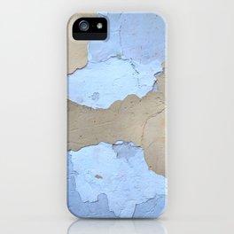 019 iPhone Case