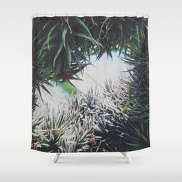 Enclosed Shower Curtain