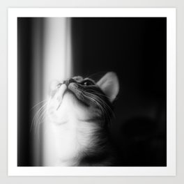 Looking Into The Light Art Print