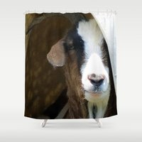 goat Shower Curtains featuring goat by Laura Grove