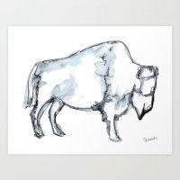 Buffalo, Watercolor Art Print
